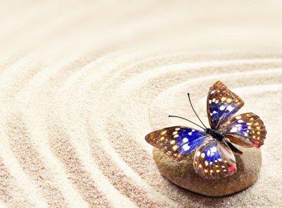 Плакат Бабочка на песке
