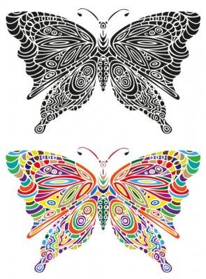 Плакат бабочка цвет и черный орнамент
