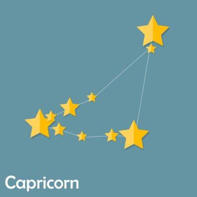Плакат Козерог Знак Знак красивый яркий вектор звезды Illus