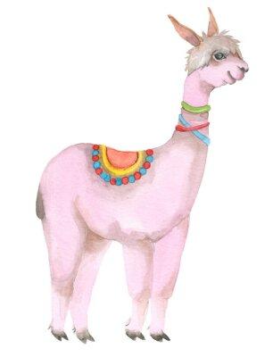Плакат Cartoon watercolor lama portrait.