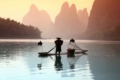 Плакат Китаец рыбалка с бакланы птиц
