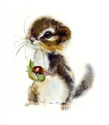 Плакат Chipmunk. Watercolor hand drawn illustration.