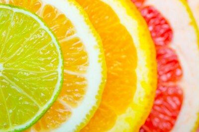 Плакат citrus background