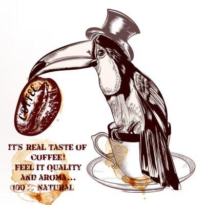 Плакат Кофейный фон вектор или плакат с рисованной тукан птицы ч