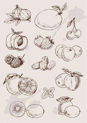 Плакат Коллекция дро изолированы фруктов