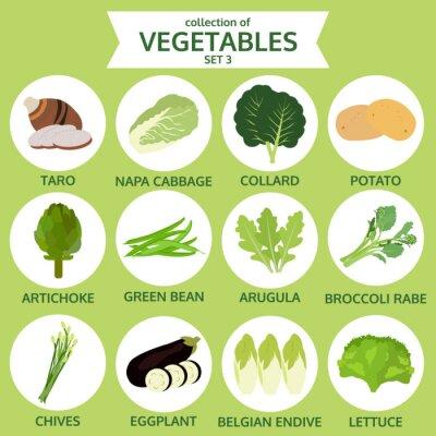Плакат сбор овощей, продуктов питания векторные иллюстрации, набор иконок Чет
