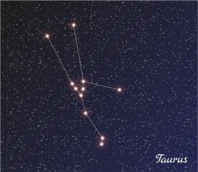 Плакат созвездие Телец
