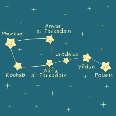 Плакат милый мультфильм маленький ковшик созвездие с именем звезды векторной иллюстрации