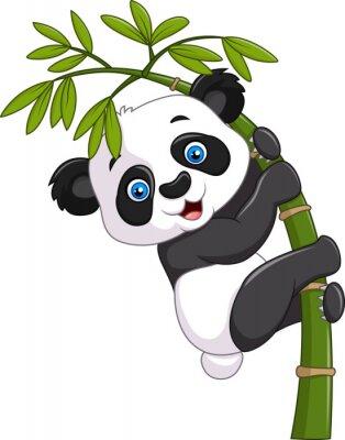 Плакат Милый забавный ребенок панды висит на бамбуковой дерева