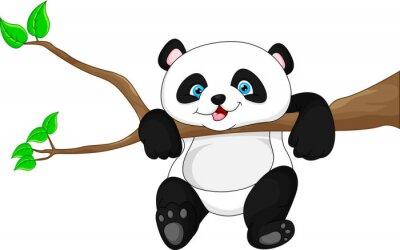 Плакат Милый забавный ребенок панды висит на дереве