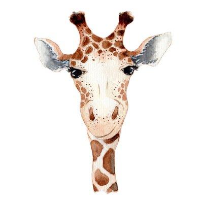 Плакат Cute giraffe cartoon watercolor illustration animal