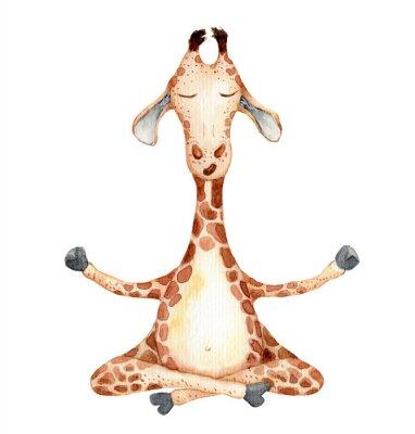 Плакат Cute giraffe in yoga position  cartoon watercolor illustration animal