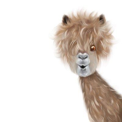 Плакат Cute lama portrait hand painting illustration