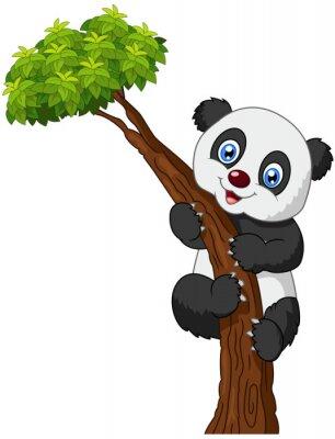 Плакат Симпатичные панды мультфильма восхождение дерево