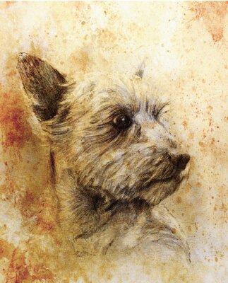 Плакат Собака рисунок карандашом на старой бумаге, старинные бумаги и старой конструкции с цветными пятнами.