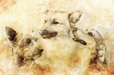 Плакат Собаки карандашный рисунок на старой бумаге, старинные бумаги и старой конструкции с цветными пятнами.