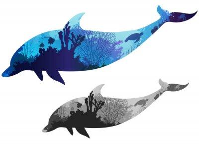 Плакат дельфин