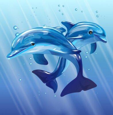 Плакат дельфины