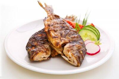 Плакат Дорада рыбы.