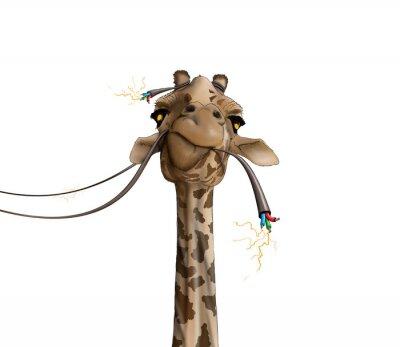 Плакат рисунок жирафа