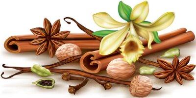 Плакат Сухие ароматические специи