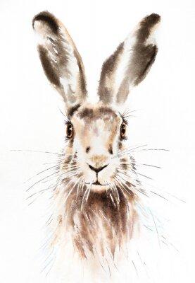 Плакат Easter bunnies watercolor illustration, rabbit portrait isolated