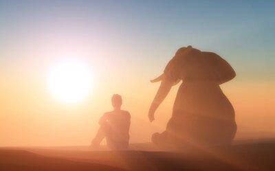 Плакат Слон и вы