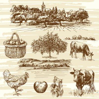 Плакат фермы, урожай, сельский пейзаж - ручной обращается набор
