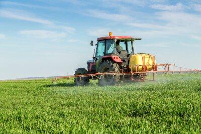 Плакат Фермер распыления зеленое поле пшеницы
