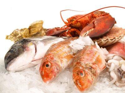Плакат Рыба и морепродукты