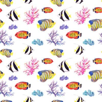 Плакат Рыба и ракушка. Повторяя бесшовные модели. Акварель