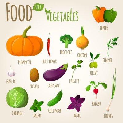Плакат Пищевые овощи, установленные