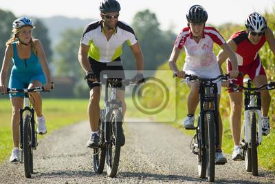 Плакат Четверо друзей велосипеде вниз по дороге.