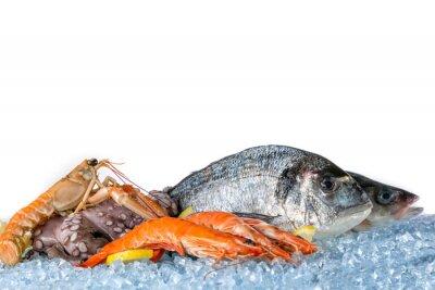 Плакат Свежие морепродукты на белом фоне
