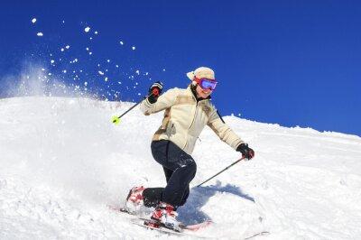 Плакат Freude я Skifahren