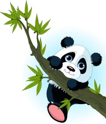 Плакат Гигантская панда восхождение дерева