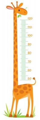 Плакат Giraffe meter wall