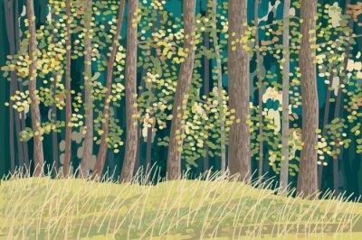 Плакат Зеленый лес