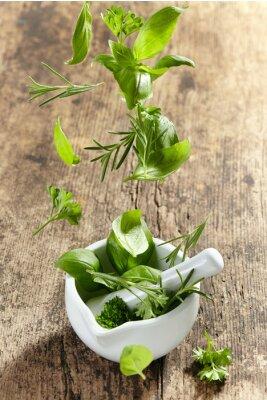 Плакат зеленые травы попадания в ступке пестиком