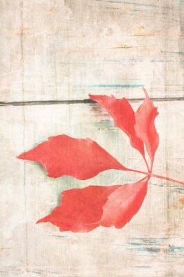 Плакат Шероховатый фон с красный лист