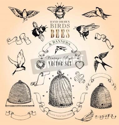 Плакат Рисованной Птицы, пчелы и баннеры Стиль Vintage набор векторных