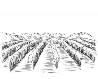 Плакат Рисованной Пейзаж с полями.
