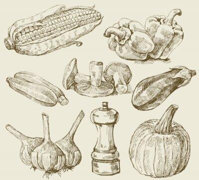 Плакат Рисованной набор овощей