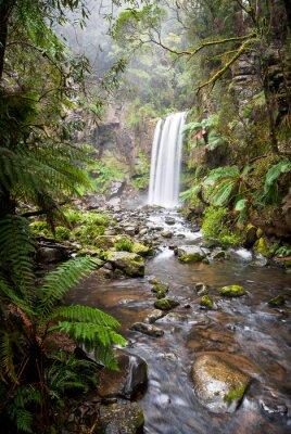 Плакат Hopetoun водопад, уединенные водопад в Отуэй Диапазоны, Австралия