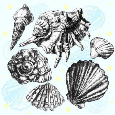 Плакат Иллюстрация с различными реалистичных оболочек