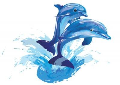 Плакат прыжки дельфинов