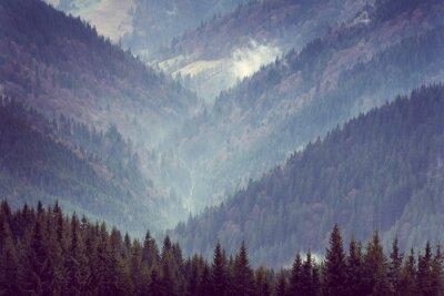 Плакат Пейзаж горных лесных холмов.