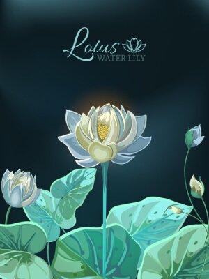 Плакат Цветок лотоса с зелеными листьями крупным планом в стиле рисованной