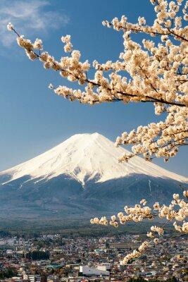 Плакат Гора Фудзи с ветвями вишневого дерева, Япония