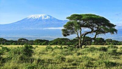 Плакат Гора Килиманджаро в Кении